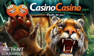 Veilig casino